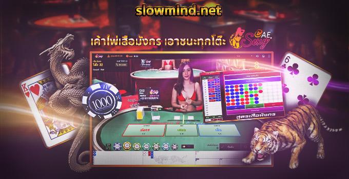 ไพ่เสือมังกร Sexy Gaming